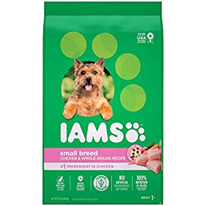 IAMS PROACTIVE HEALTH Small & Toy Breed Adult Dry Dog Food for Small Dogs with Real Chicken, 15 lb. Bag