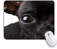 印刷されたマウスパッド黒チワワ素敵な青い顔オブジェクト動物野生動物チェーン犬、ゲームプレーヤーのオフィスのための装飾的なマウスパッド、デスクの装飾、9.5 x 7.9インチ