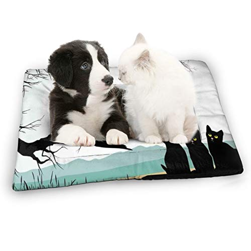 2096 pants Zoey-A Mother Cat On Tree Branch and Baby Kittens in Park Best Friends I Love My Kitty Graphic Pet Bed Mat Soft Crate Mat with Anti-Slip Washable Pet Mattress for Dog Sleeping
