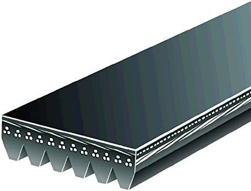 Gates K060891 Automotive V-Ribbed Popular products Belt Direct store Standard