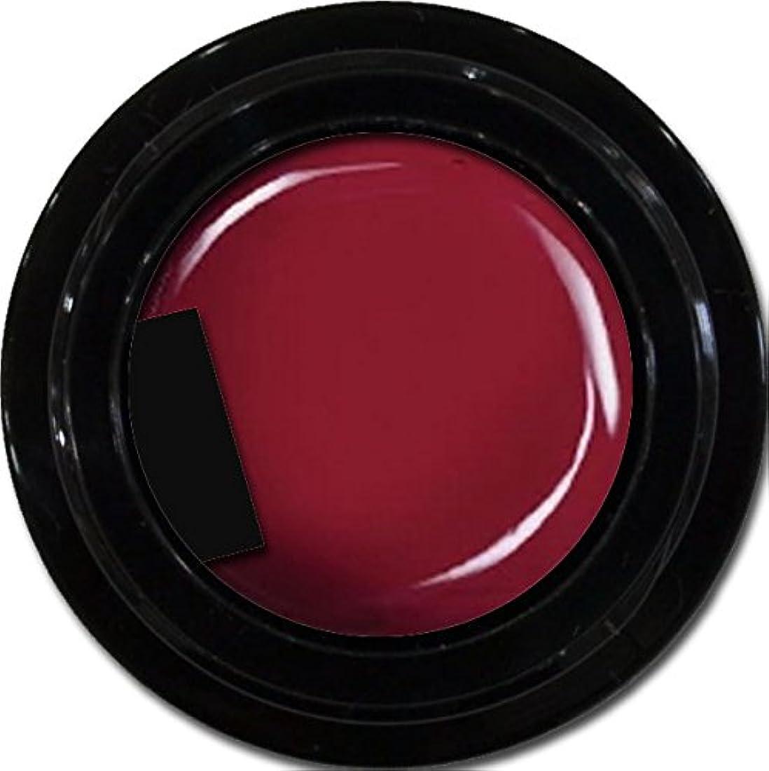 懲戒勧告フェードアウトカラージェル enchant color gel M408 PlumJerry 3g/ マットカラージェル M408プラムジェリー 3グラム