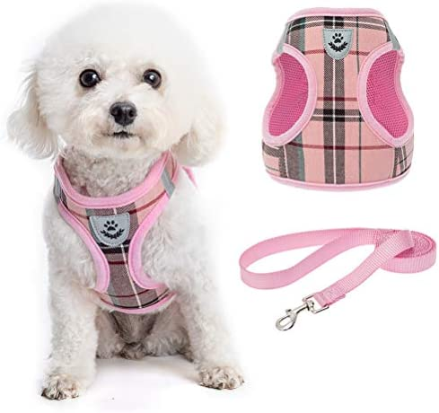 Soft Mesh Plaid Puppy Harness Small Dog Harness and Leash Set Adjustable Comfortable Padded product image
