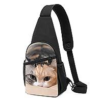 ワンショルダーバッグ メンズ 斜めがけ胸バッグ ボディー肩掛けバッグ 小型手提げバッグ 出張 通勤 通学用 ふわふわ ねこ 猫柄