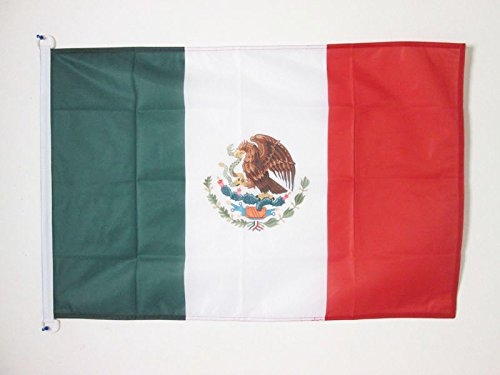 AZ FLAG Drapeau Nig/éria 150x90cm Drapeau nig/érian 90 x 150 cm Polyester l/éger
