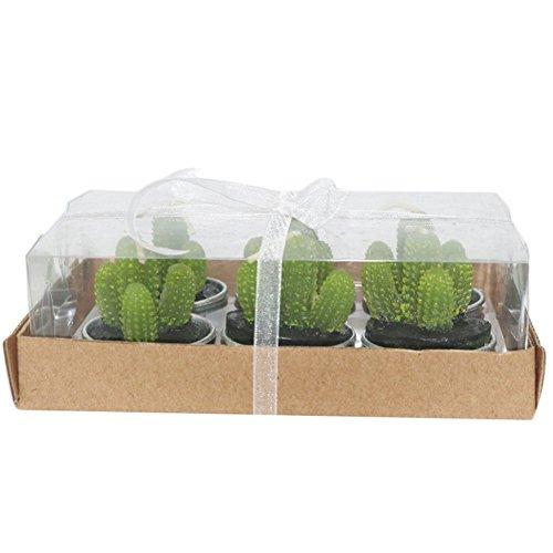 Cosanter 6er Pack Kaktus Kerzen fleischige Kaktus Pflanze Teelichter für Weihnachten Geburtstag Hochzeit Wohnungsdekoration