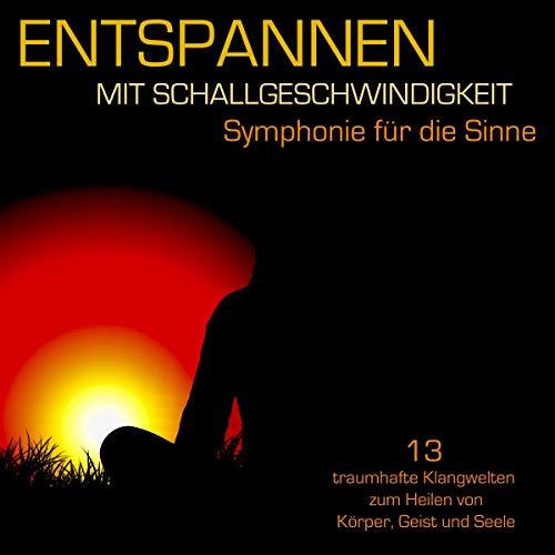 Entspannen mit Schallgeschwindigkeit audiobook cover art