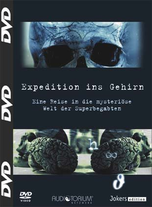 Expedition ins Gehirn.