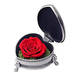 Preserved Rose Flower with Gift Box