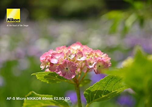 Nikon単焦点マイクロレンズAF-SMicro60mmf/2.8GEDフルサイズ対応