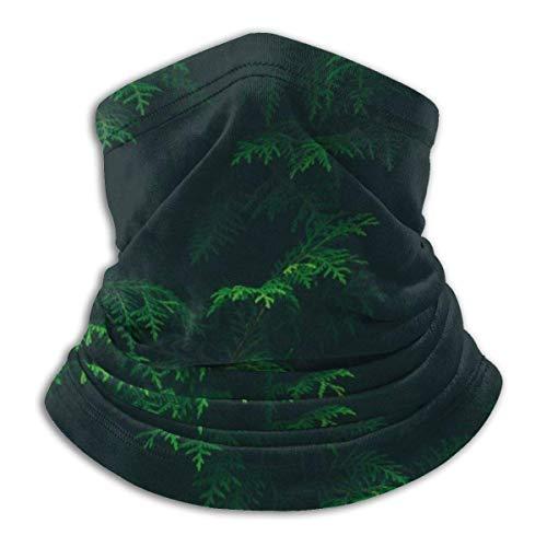 N/A Tough Headwear,Tube Scarf,Green Forest Art Painting Outdoor Sports Neck Warmer Headband Bandana Balaclava