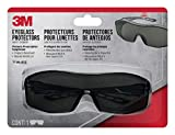 3M Safety Eyeglass Protectors with Scratch Resistant Lens, Tinted (47032-WZ6)