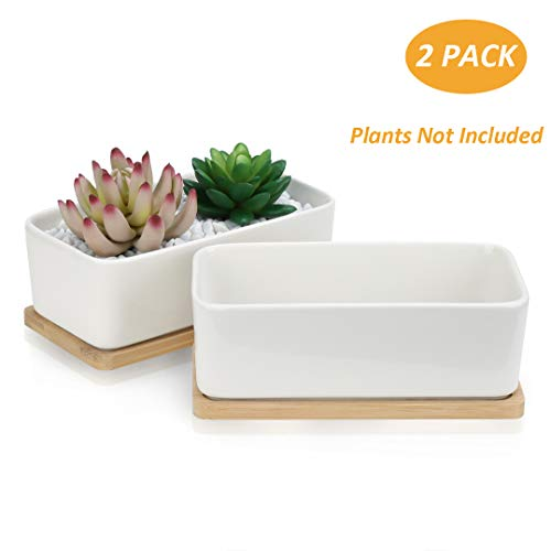 OAMCEG Succulent Pots, 6.5 Inch Rectangular Ceramic Planters,Set of 2 White Cactus Container, Bonsai Pots, Flower Pots with Drainage Hole/Bamboo Tray(Plants NOT Included)