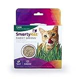 SmartyKat Sweet Greens Organic Oat Grass Cat Grass Grow Kit