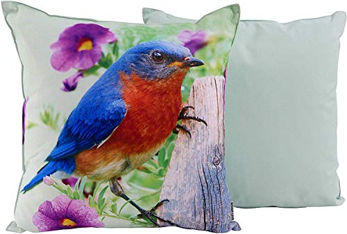 CB Home % Style Outdoor Garten Kissen Druck Tiere Vogel 45 x 45 cm (Vogel4)