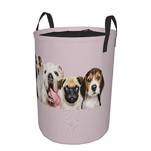 Storage Baskets,Cute English Bulldog Pug Labrador Girls Funny Dog Lovers Puppy With Flower Kids Creative Animal Pet For Family,Drawstring Round Collapsible Laundry Hamper for Toy Home 21.6'X16.5'