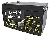 Batería de Gel de Plomo para cortacésped Remco RM12-12D de WSB, 12 V, 12 Ah, tecnología AGM, para Jeep, Peg-Perego, John Deere, Gator, HPX NP12-12, Vision 6-FM-12, 6-DZM-12, Robomow RM200