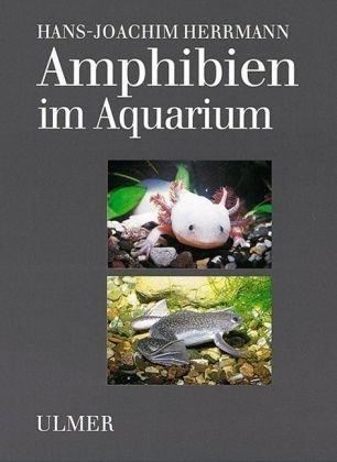 Amphibien im Aquarium