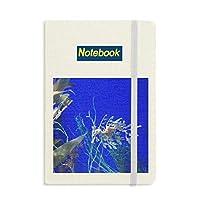 海洋深層水の青海馬水 ノートブッククラシックジャーナル日記A 5