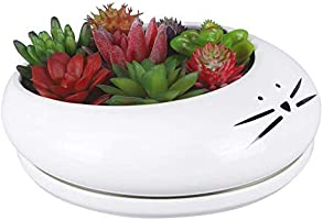 Koolkatkoo 8 Inch Succulent Cat Planter Ceramic White Large Cute Flower Pot with Removable Tray Outdoor Planters for Cat...