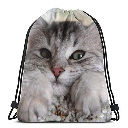 Hangdachang Rucksack mit Kordelzug, Motiv: niedliche Katzen, Tiere, grüne Augen, Pfoten