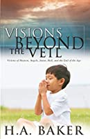 Visions Beyond the Veil: Visions of Heaven, Angels, Satan, Hell and the End of the Age