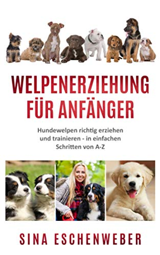 WELPENERZIEHUNG FÜR ANFÄNGER: Hundewelpen richtig erziehen und trainieren - in einfachen Schritten von AbisZ