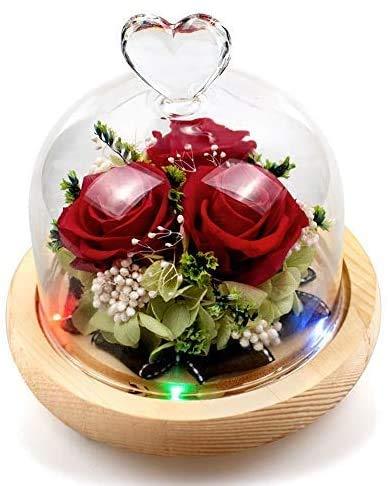 Rosa Eterna, La Bella y La Bestia, Rosa Encantada, Flor Artesanal Conservada, Elegante Cúpula de Cristal y 8 Colores de luz LED, para la decoración del hogar Boda Cumpleaños el Aniversario de Boda