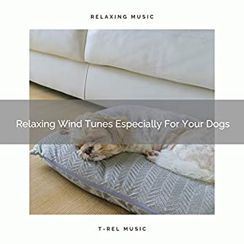 Relaxing Wind Tunes Especially For Your Dogs