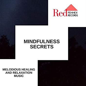 Mindfulness Secrets - Melodious Healing And Relaxation Music