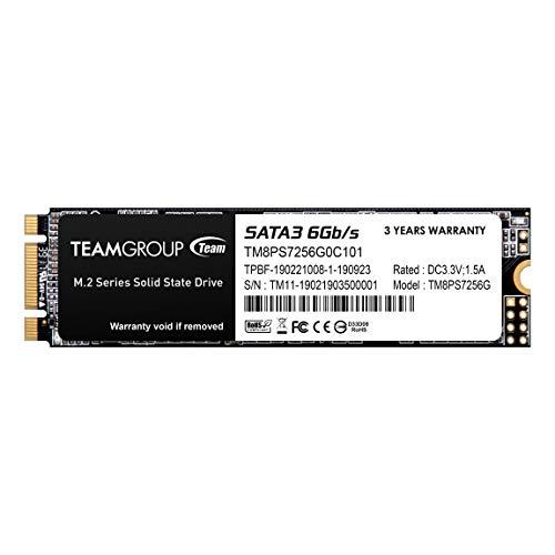SSD m.2 256GB Team MS30 Typ 2280
