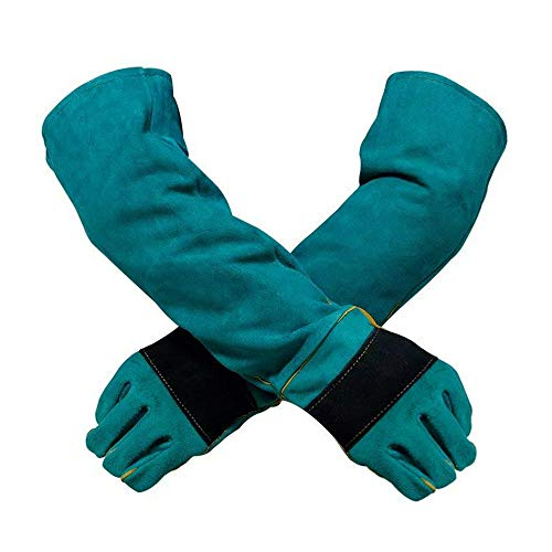 YBB Animal Handling Anti-bite/Scratch Gloves for Dog Cat Bird Parrot Pet (Green)