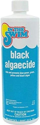 Top 10 Best black algaecide for pool Reviews