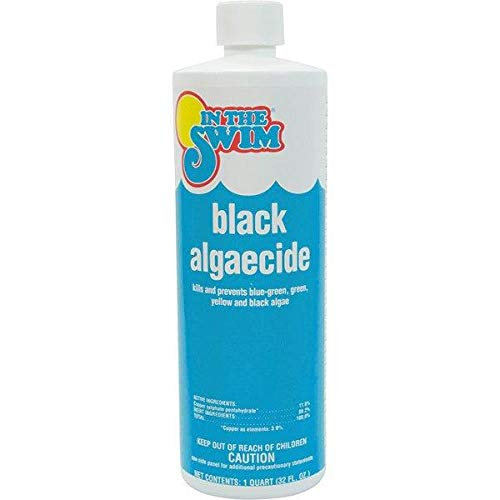 In The Swim Black Pool Algaecide - 1 Quart