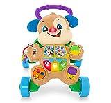 WWJL Juguetes para BebéS Andador para BebéS Multifuncional Cuatro Ruedas Empuje Manual MúSica EducacióN Temprana Antivuelco Juguete para NiñOs Juguetes para BebéS 6 Meses MáS