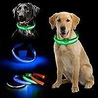 SHUITOU の点滅光る宝石ライトLEDは、製品犬ライトペットの犬の首輪アジャスタブル小さなペットルミナス安全首輪用品 (Color : Orange, Size : S)