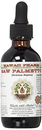 Saw Palmetto Alcohol-Free Liquid Extract, Organic Saw Palmetto (Serenoa Repens) Dried Berry Glycerite 2 oz