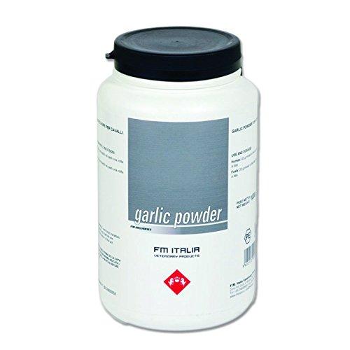 Garlic Powder 1 kg - Aglio in polvere di prima qualità