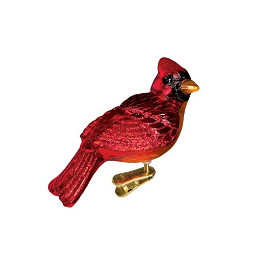 Old World Christmas Bird Watcher Collection Glass Blown Ornaments for Christmas Tree Resting Cardinal