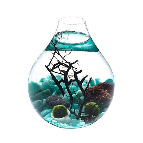 KNIKGLASS Runde Aquarium Glas,Glaskugel Aquarium Deko Tisch Aquarium, Micro Landschaft Aquarium Dekoration für Zuhause, Büro und Wohnheim (Grün)