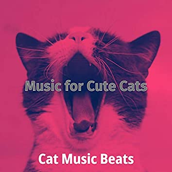 Music for Cute Cats