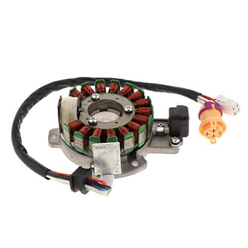 IPOTCH 12V Magnetgenerator-Motor Für meisten chinesischen 250ccm Go Karts und Scooter Motorräder