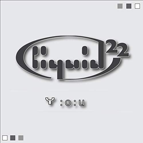 Liquid 22