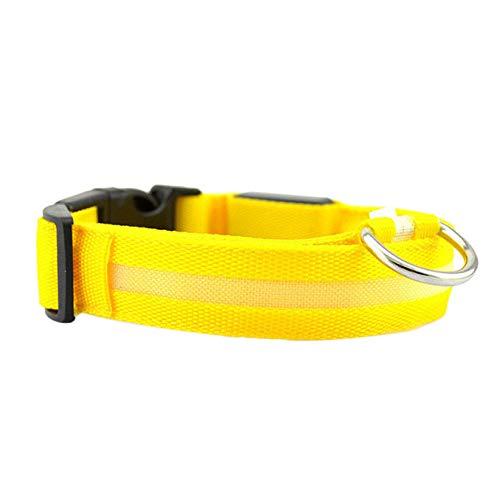 Hondenhalsband, LED, geel, elektrisch, nylon, hondenhalsband, halsband, veiligheidslijn voor kleine honden, alle seizoenen, zacht gevoerd, ademend, licht, XL
