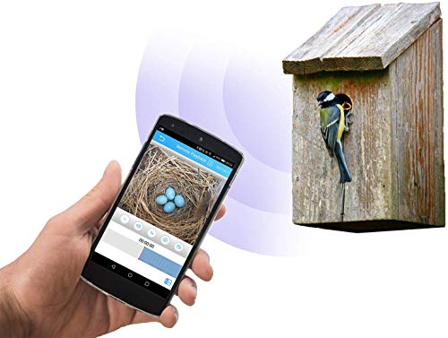 Green Feathers Wildlife Wi-Fi Bird Box Full HD 1080p Camera with IR (Night Vision), MicroSD Recording, View Directly On Smartphone, PC or Tablet
