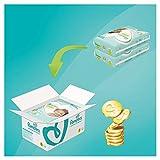 Pampers Premium Protection Windeln, Gr.5, 11-16kg, Monatsbox, 1er Pack (1 x 136 Stück) - 2