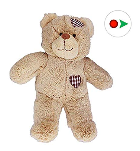 "Recordable 8"" Plush Brown Patches Bear w/20 Second Digital Recorder for Special Messages, Rymes or Songs"
