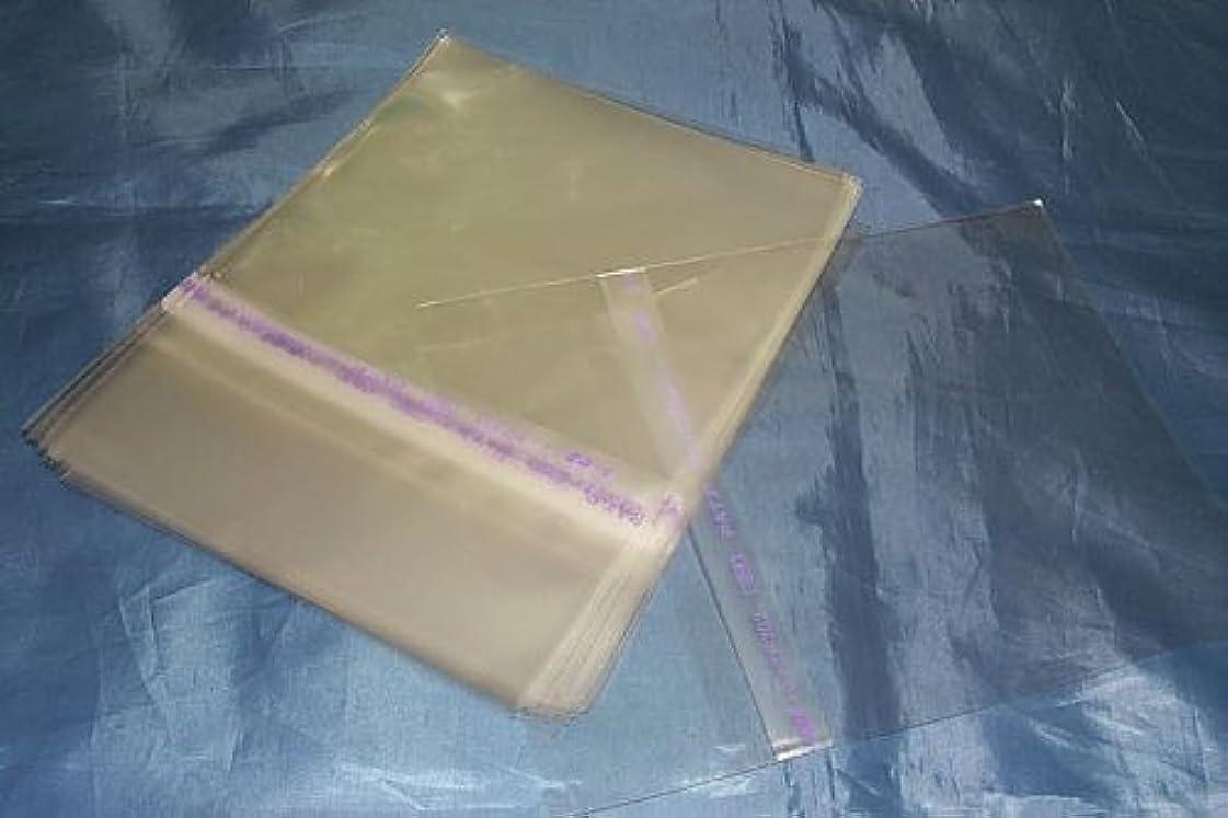 (サプライ) CD用、のり付き外袋100枚セット