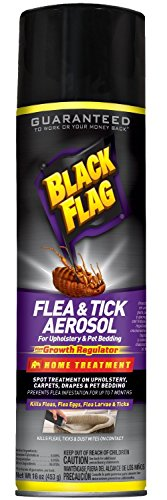 Black Flag 11094 11094-IPO Flying Insect Killer Spray 18 oz Grass Plants