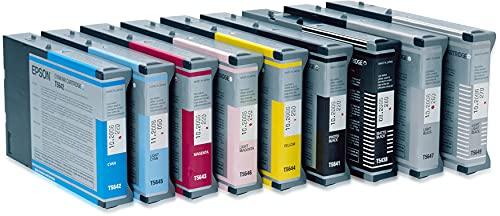 Epson T605700 UltraChrome K3 110ml Light Black Cartridge (T605700)