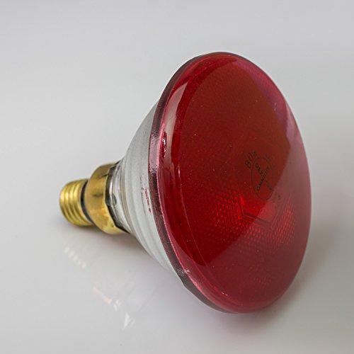 Showking lamp PAR-38 230V / 80W / fitting E-27 / 3200K / rood - reservelamp voor PAR-38 koplampen